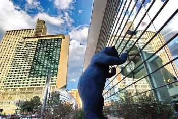 blue_bear_denver