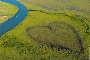 Il Coeur de Voh, l'incredibile simbolo della Nuova Caledonia