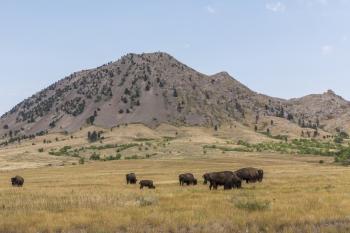 bear-butte-indiani-dakota-south