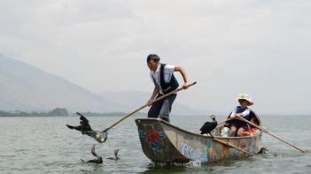 Pesca cormorani lago erhai yunnan
