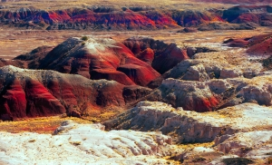 painteddesert_arizona_parchiamericani