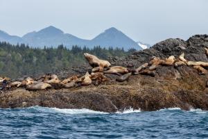 vancouver-island_viaggio