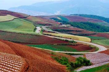Panorama Yunnan Campi