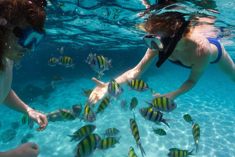 nuova-caledonia-snorkeling